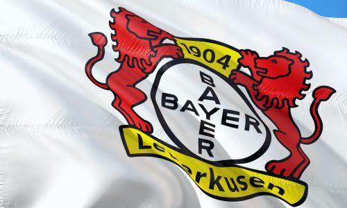 https://pixabay.com/de/photos/fahne-flagge-logo-fu%C3%9Fball-2972108/?download